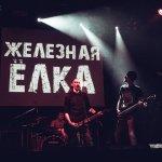 Zelecnaya elka 14
