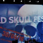 Old Scull Fest (3)