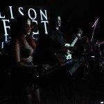 Ellison Effect-013